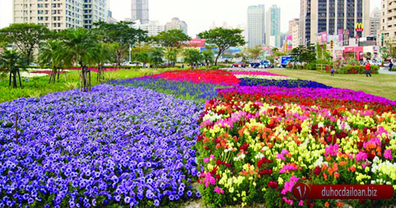 Mùa xuân ở Đài Loan.